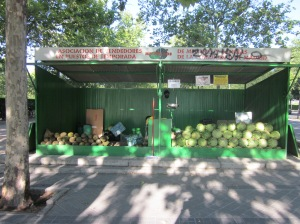 Melons anyone?